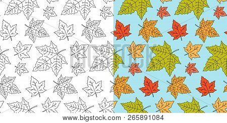 Autumn Maple Leaf Seamless Pattern. Fall Leaves Texture. Seasonal Template With Leaf Pattern. Colorf