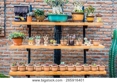 Small Tree In Beautiful Pot Decorate On Wood Shelf With Brown Brick Wall Background.