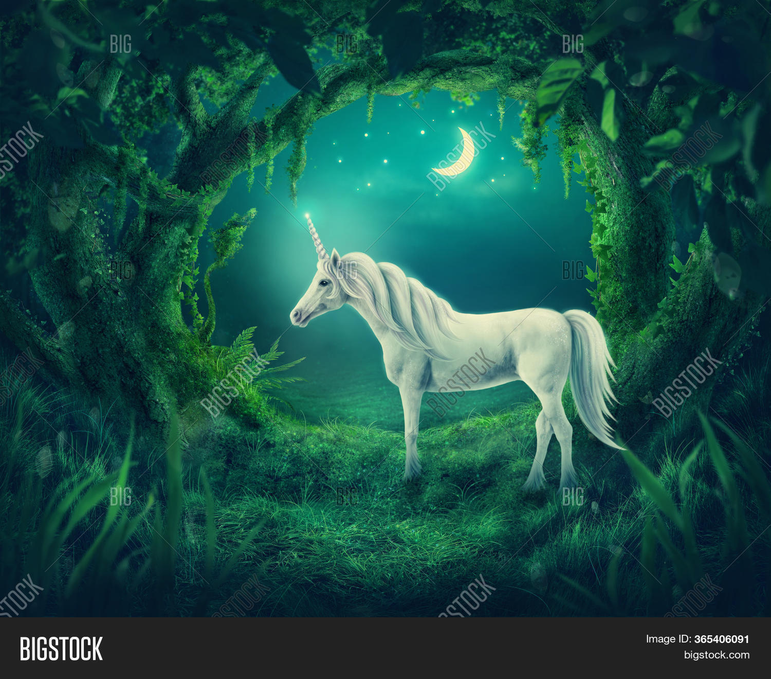 Magic Forest Moonlight Image Photo Free Trial Bigstock