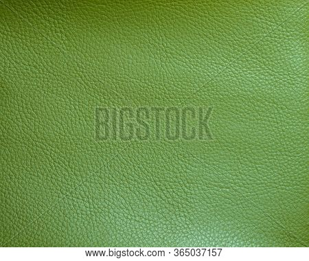Green Faux Leather. Faux Leather Texture Close Up