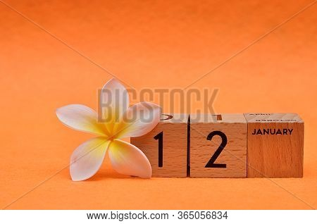 12 January On Wooden Blocks With A Frangipani Flower On An Orange Background