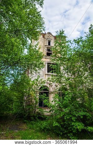 Destroyed Building Overgrown With Trees In An Abandoned Sanatorium