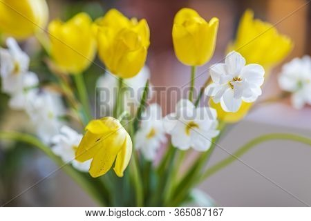 Close Up Of Withered Tulips In A Vase