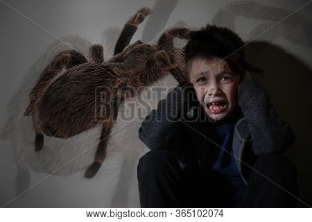 Arachnophobia Concept. Double Exposure Of Scared Little Boy And Spider