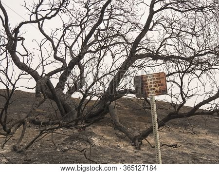 Single Burnt Park Sign From Wildfire
