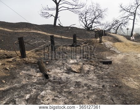 Burnt Fence And Trails At Park