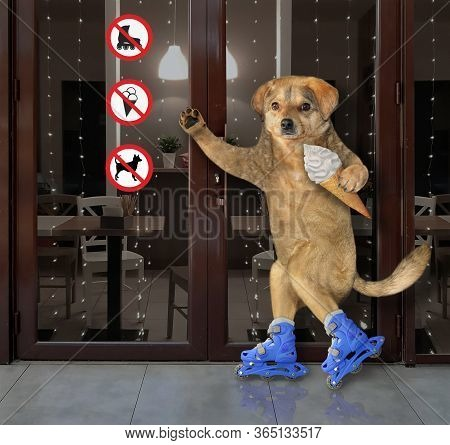 The Beige Dog With A Ice Cream Cone Is Skating On Blue Rollerblades Past A Cafeteria With Prohibitio