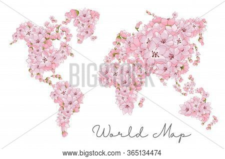 Map Of The World Of Cherry Blossoms. The Outline Of The World On A White Background. Countries And C