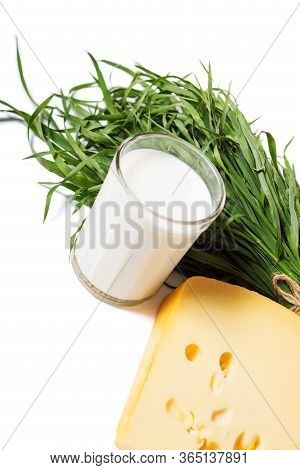 Grass, Milk And Cheese. Steps Of Cheese Production.