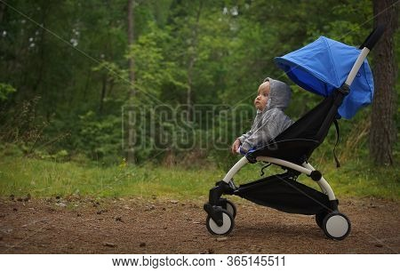 Small Thoughtful Child In Sweatshirt Hood On Head Sitting In Baby Stroller In Green Park, Little Tra