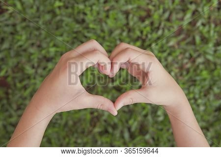Hands Making Heart Shape Over Green Grass, Earth Day, World Environment Day, Save The World, Love Na