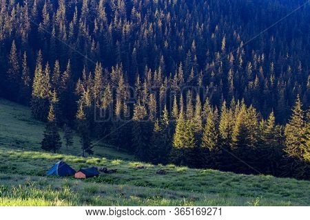 Tourist Tents In A Meadow Among The Mountains. Tourist Tents In A Clearing Among The Coniferous Fore