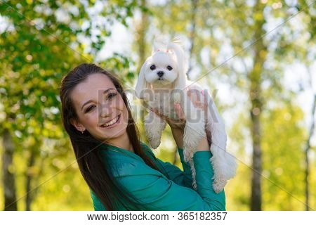 Young Girl With Her Dog. Puppy White Dog Is Running With Its Owner. Concept About Friendship And Ani