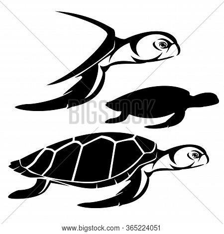 Green Sea Turtle Side View Portrait - Animal Profile Head And Silhouette Black And White Vector Desi