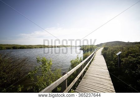 Sunny View Of Tourist Sightseeing Path Along Lakeshore. Rest Place On Wooden Walkway In National Res