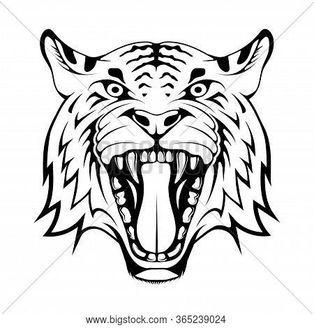 Angry Tiger Face, Isolated On White Background, Suitable As Logo Or Team Mascot. Bengal Tiger. Preda