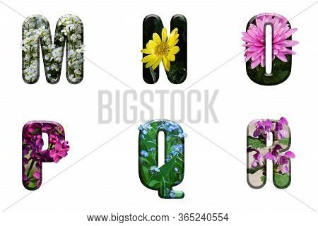Flower Font Alphabet M N O P Q R Made Of Real Alive Flowers With Precious Paper Cut Shape Of Letter.