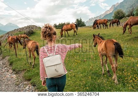 Close Up Girl Female With Horses In The Background Of Mountains Nature. Happy Woman With An Animal H