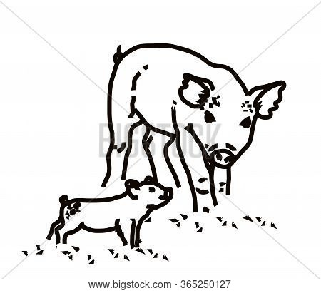A Pig And Her Cub On A White Background. Linear Silhouette. Vector Illustration.