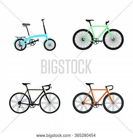 Set Of Bicycle Design. Mountain Bike, Folding Bike, Racing Bike, And Road Bike. Good For Bicycle Day