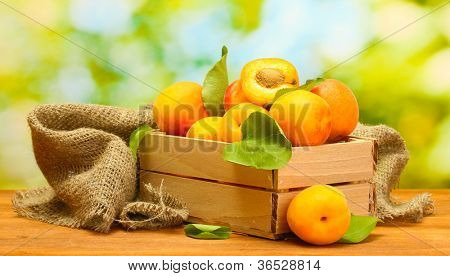 ripe apricots with leaves in wooden box on wooden table on green background