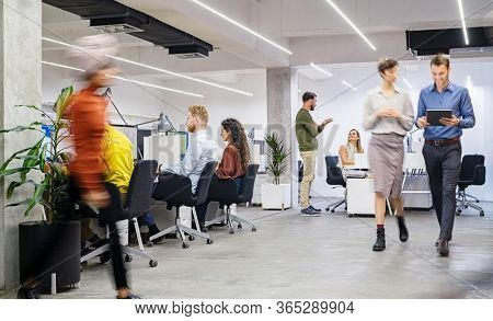 Group of businesswomen and businessmen working in modern office. Busy coworking open space with staff walking and working together. Group of creative men and casual women working in creative agency.