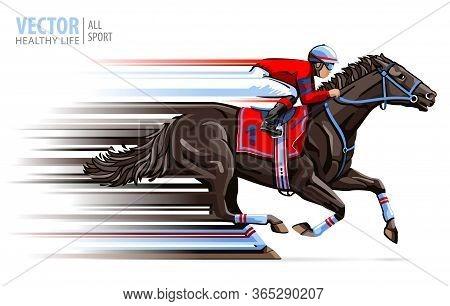 Jockey On Horse Race. Sport. Racehorse. Hippodrome. Racetrack. Equestrian. Derby. Speed. Isolated On