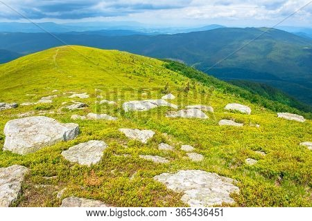 White Rocks On The Edge Of Alpine Meadow. Fresh Green Grassy Slopes Of Mountain Landscape In Summer.