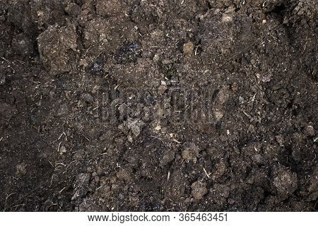 Organic Eco Manure, Fertilizer, Close Up. The Concept Of Farming, Animal Husbandry, Environmental Fe