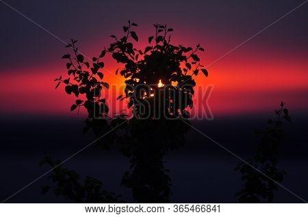 Bright Nature Background. Dawn, Leaves, Sky At Dawn. Sunrise