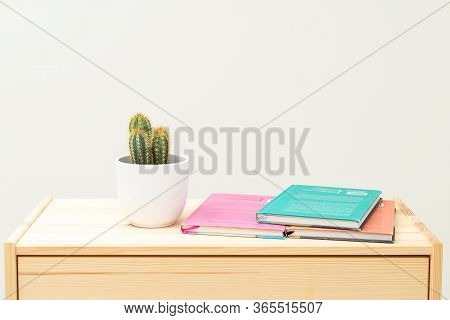 Cactus And  Books On Wooden Shelf. Life Style. Minimalis.  Reading
