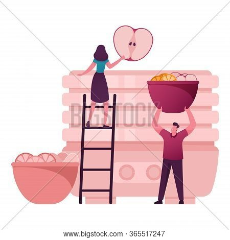 Tiny Male Female Characters Put Fresh Ripe Fruits Into Huge Dehydrator For Drying And Cooking Chips.
