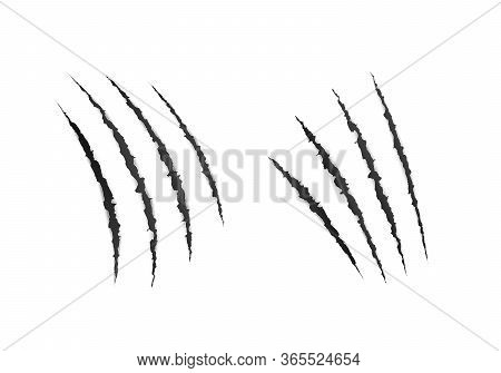 Wild Animal Claws Scratches. Scary Laceration Paper Surface. Vector Illustration