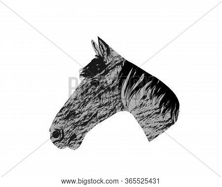 Hand Sketch Horse Head. Beautiful Arabian Stallion Sketch Icon For Horse Breeding Symbol, Equestrian