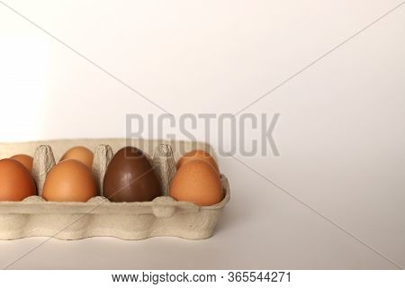 Container With Eggs. Container With Chicken Eggs, One Chocolate Egg. Chocolate Egg In A Container Wi