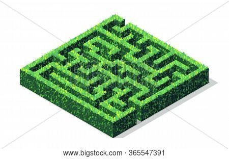 Vector Isometric Green Hedge Maze Or Labyrinth