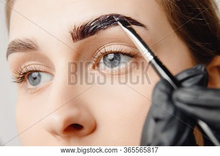 Master Brush Dye Henna Eyebrows Woman In Beauty Salon. Correction Of Brow Hair