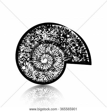 Spiral View Of A Snail. Illustration Of A Spiral Snail On A White Background.