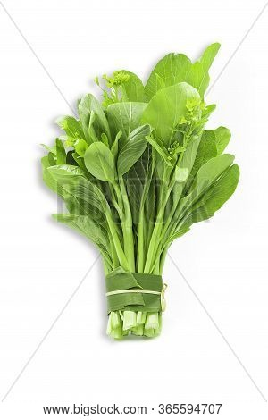 Fresh Organic Green Choy Sum Or Bok Choy On White Isolated Background With Clipping Path In Vertical