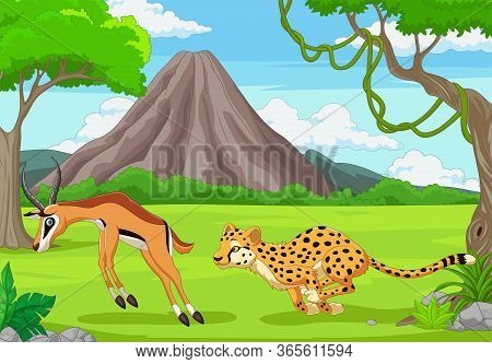 Vector Illustration Of The Cheetah Is Chasing An Impala In An African Savanna
