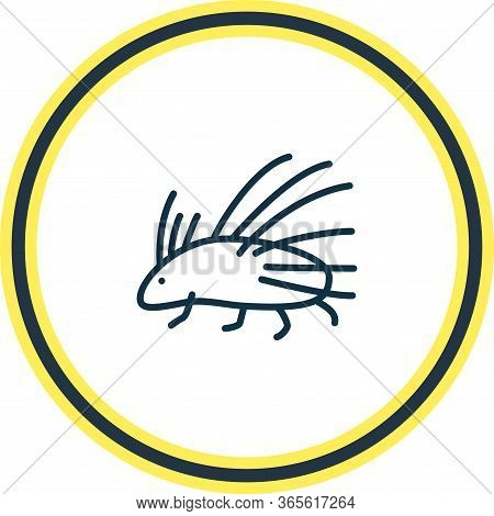 Vector Illustration Of Porcupine Icon Line. Beautiful Zoo Element Also Can Be Used As Hedgehog Icon