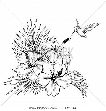 Composition With Hibiscus, Palm Leaves And Hummingbird. Vector Botanical Illustration