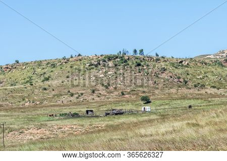 Landscape With An Old Caravan, Shacks, Horses And One Person At Golden Gate In The Free State Provin