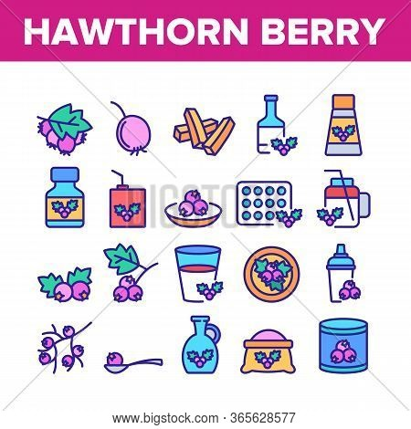 Hawthorn Berry Food Collection Icons Set Vector. Hawthorn Syrup And Juice, Beverage And Fresh Drink,