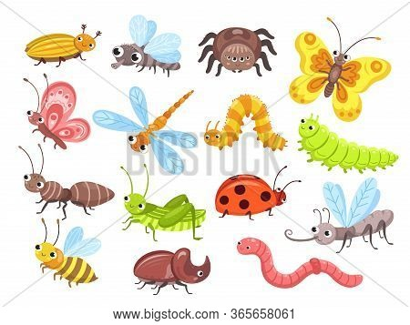 Cartoon Insects. Fly Bug, Cute Butterfly And Beetle. Funny Garden Animals. Ant Bumblebee And Spider