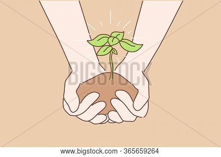 Greening, Ecology, Earth Day Concept. Human Hands Palms Holding And Passing Young Plant Or Sapling.