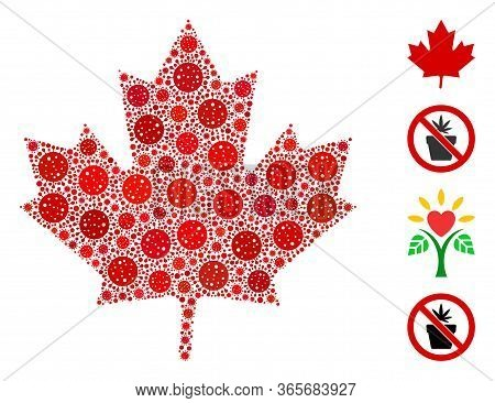 Collage Maple Leaf United From Coronavirus Icons In Random Sizes And Color Hues. Vector Infection Ic
