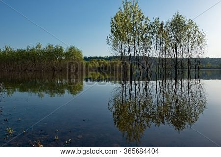 Russia, Kuznetsky Alatau. Flooded With Spring Water, The Shore Of The Tom River Near The Village Of