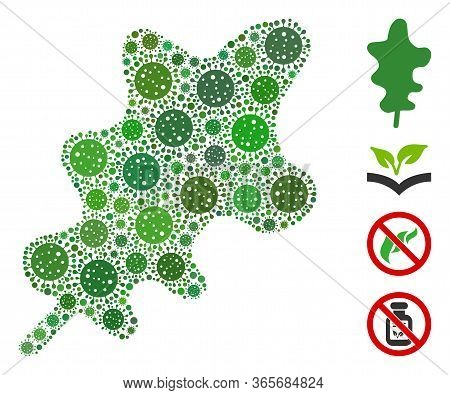 Collage Oak Leaf Composed Of Covid-2019 Virus Icons In Variable Sizes And Color Hues. Vector Viral I