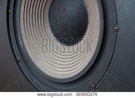 Huge Bass Vintage Loudspeaker Driver Cone Passive Radiator Macro with Screws